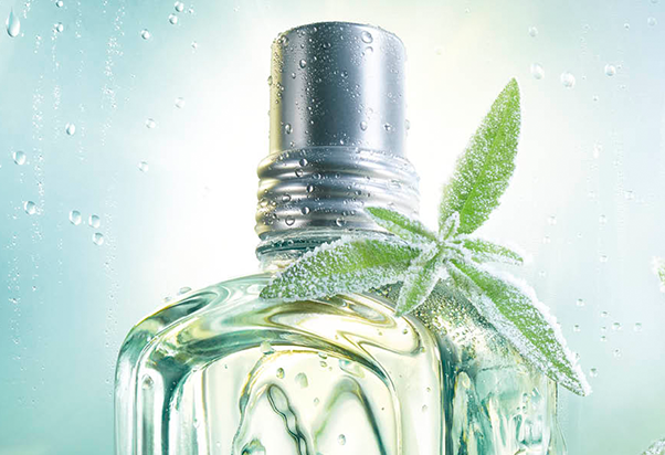 L'Occitane en Provence: add some freshness into your suitcase!